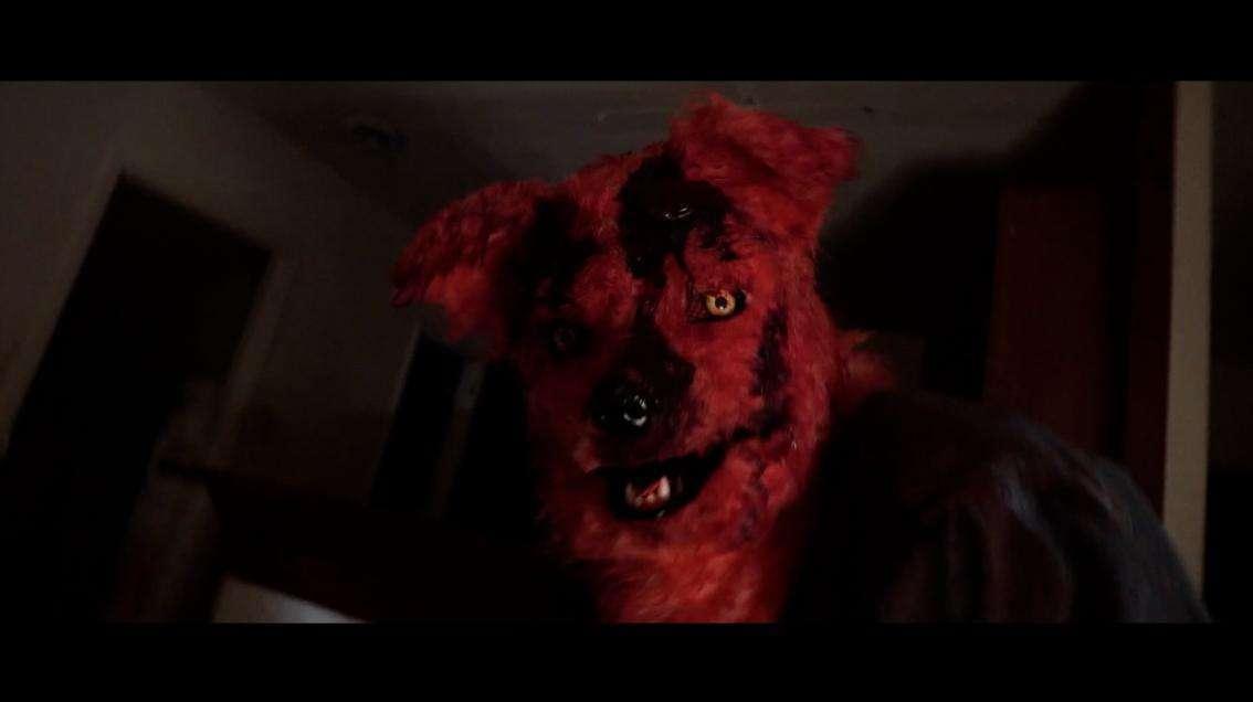Furry Nights 2